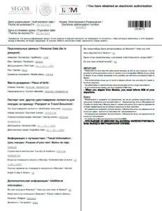 Распечатанная электронная виза в Мексику
