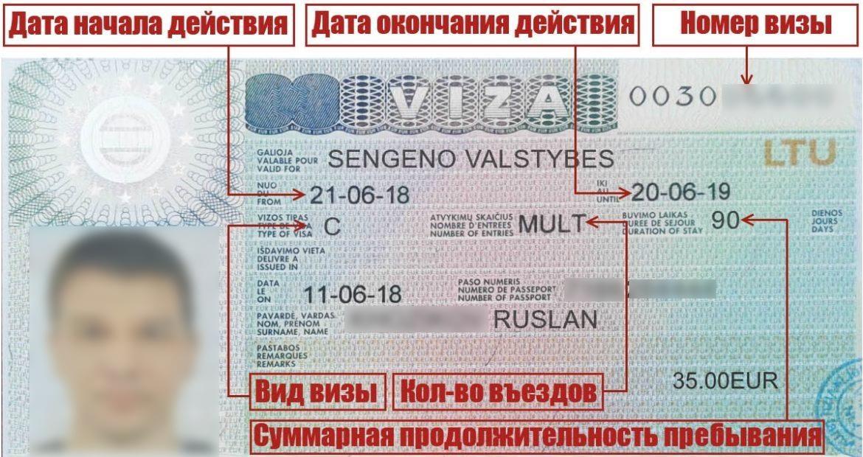 Как читать литовскую визу