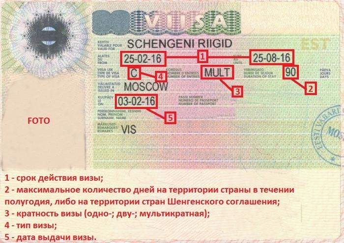 Шенгенская виза в Эстонию: как читать