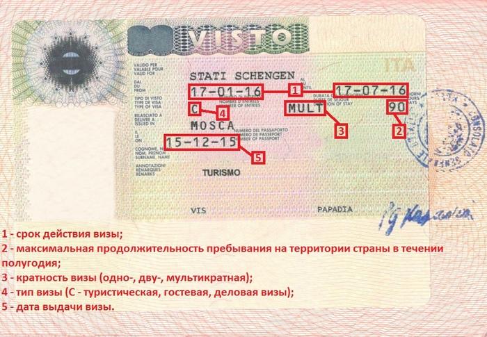 Как правильно читать итальянскую визу