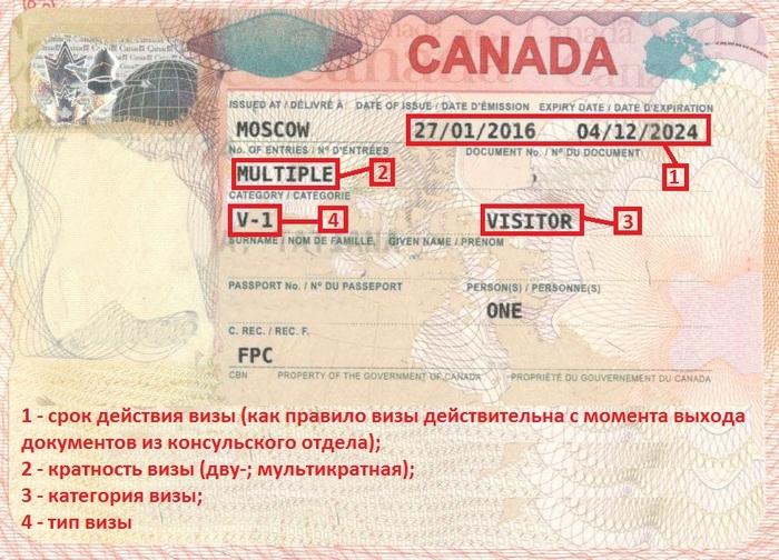 Как читать канадскую визу